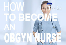 What are the specific required courses when studying to become an Ob/Gyn?